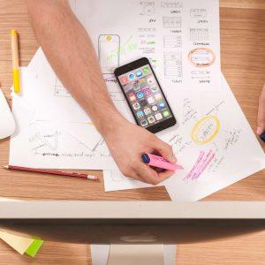 Profesionalus projektų valdymas - Valdymo inovacijų agentūra